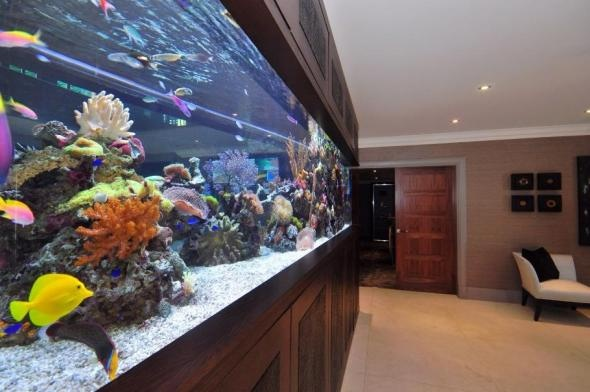 how to clean used fishtank