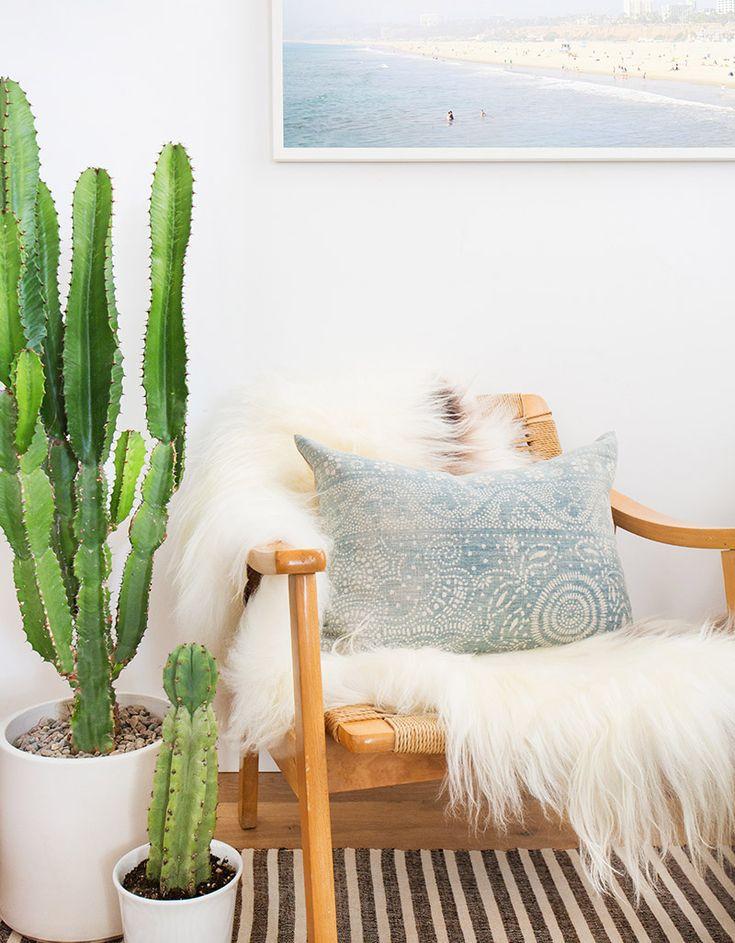 Urban jungle zithoek met cactussen en schapenvacht