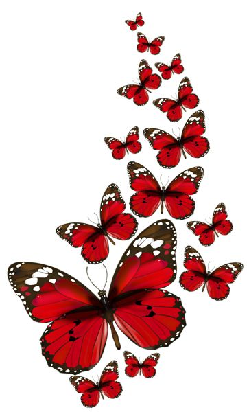 Red Butterflies Vector PNG Clipart