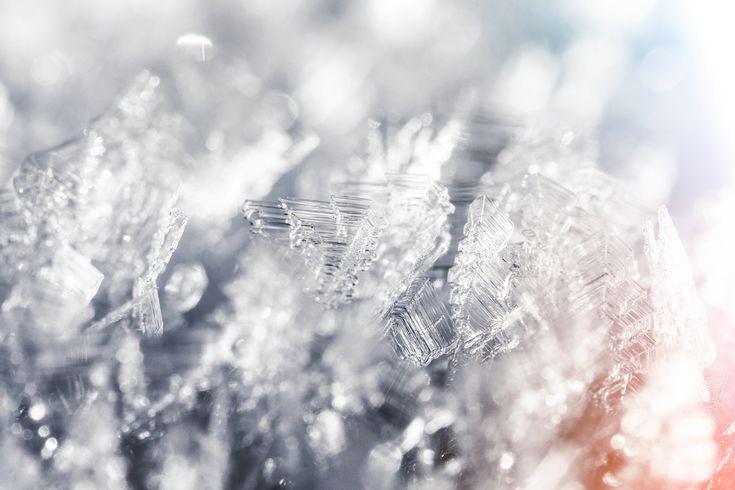 Frozen Snowflakes Winter Hoarfrost Crystals Close Up Free Stock Photo Download   picjumbo