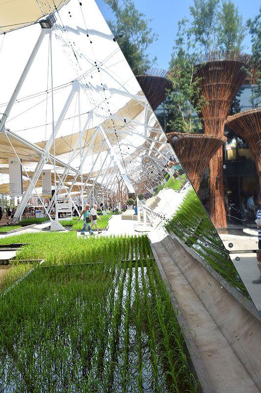 Rise pavilion at Expo Milan 2015 #raiexpo #expo2015 #italy #milan #worldsfair #architecture #rise #pavilion
