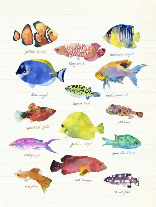 Illustration Spring Watercolor Fish Fish Drawings