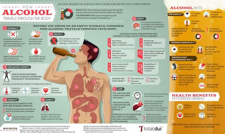 Hur påverkar alkohol kroppen? - Så färdas en snaps genom din kropp. #dryck #sprit #alkohol #hälsa #health #Obsid