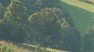 Udany wypoczynek na łonie natury jest tym czego potrzebuje każdy z nas http://karczmisko.pl/pl/o-nas