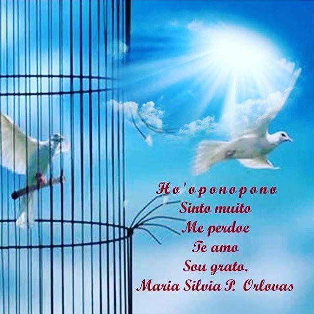 Medite no Ho'oponopono   #foconobem #vamosnaluzdoeusou   Meditação é um ato de amor.   Amor por você, por sua vida.   Feche os olhos, acolha o seu coração, faça as pazes com seu destino.   Diga para si mesmo:  Sinto muito.   Me perdoe.   Te amo.   Sou grato.   Beijo da MS   #acreditoemmilagres #hooponopono #FraternidadeBranca #mestresascencionados #vocepodefazermelhor #vamosnaluzdoeusou #foconobem