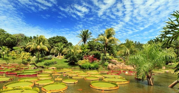 Lugares paradisiacos como este, estan en MI ciudad!! La Rinconada, Santa Cruz - Bolivia---cgz