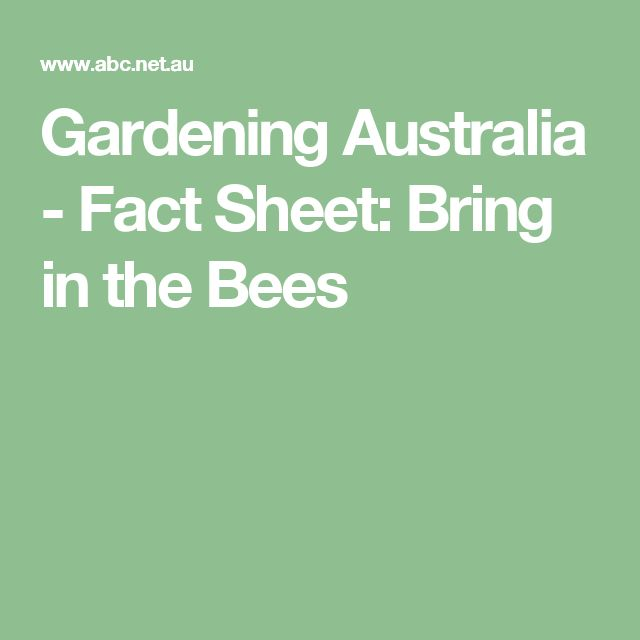 Gardening Australia - Fact Sheet: Bring in the Bees