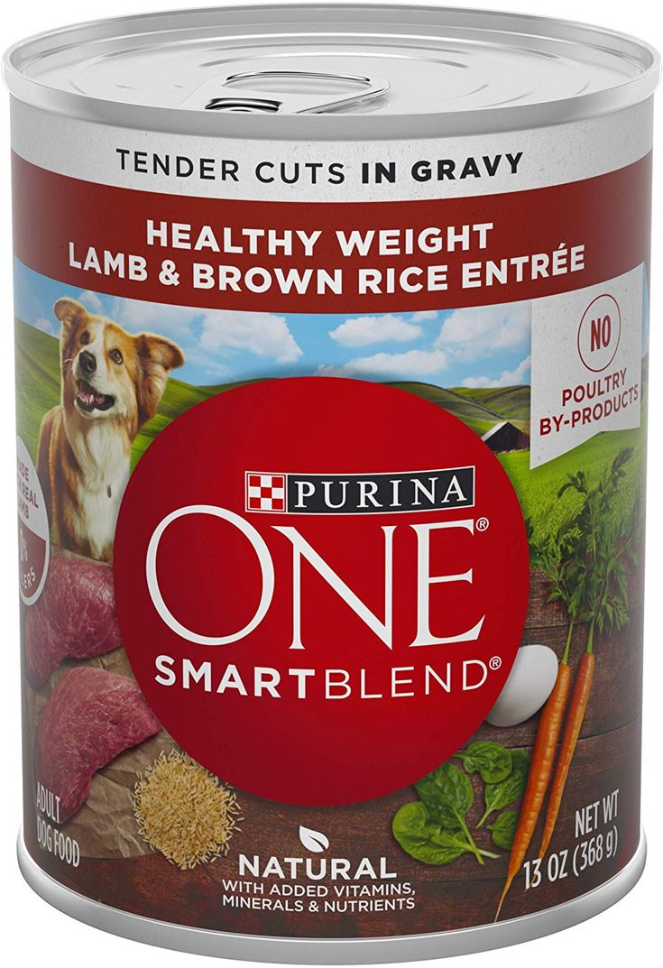 Pin on Best Canned Dog Food