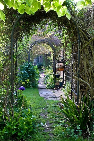 Secret Garden that REALLY takes the cake! I'd love to get lost in here...