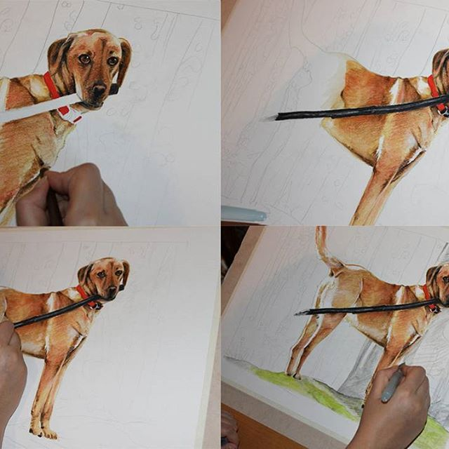 Step by step :) Dog in forest #draw #drawings #sneakpeek #instaartist #instadaily #art #arts #artofinstagram #romanianillustrator #romanianart #illustrator #illustration #dog #doglover #petlover #pet #animals #stepbystep #artists #colorful #color #instaartwork #paper #coloredpencil #traditionalart #traditionalartist #caine
