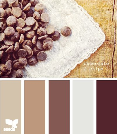 This could e a gorgeous home color scheme! Rich chocolate brown inspired color scheme: light cocoa brown, rich dark chocolate brown, tan and a pink brown rose color with gray accents, A great neutral color scheme for any room in the home. Bedroom?
