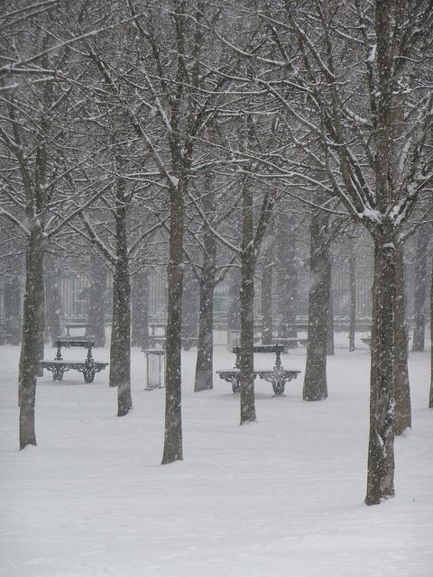 Winter park, Paris
