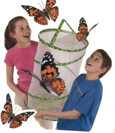 """Butterfly Pavilion.   The roomy 2-foot tall, Butterfly Pavilion habitat """"pops-up"""" easily. Hang it from a string or set it on a table-top. The breathable see-through mesh and zippered entry allows easy access for care and feeding. Butterfly Pavilions are 2004 Teacher's Choice Award winners."""