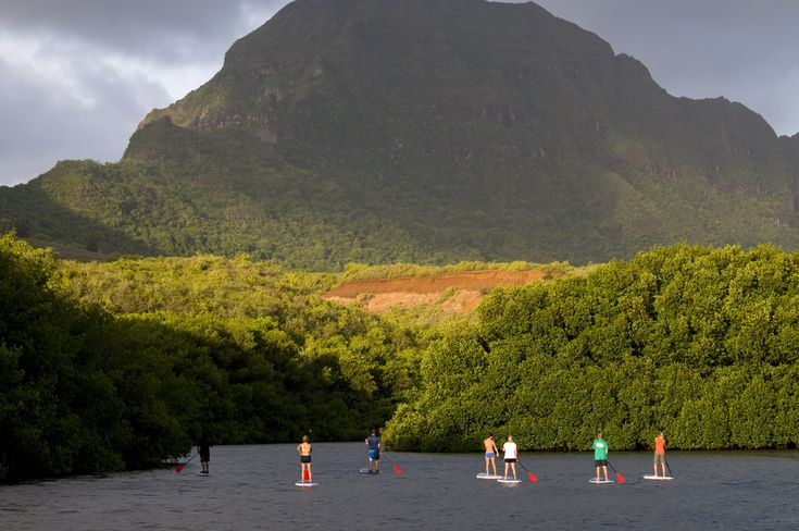 Kauai Stand Up Paddle Board Tour:  One-way downwind paddle 2 miles • Jungle nature walk 2 miles r/t • Hearty picnic lunch (incl) • Fun swimming hole with water zipline and jumping platforms • return by motorized canoe • 5 ½ hours • $128 adult
