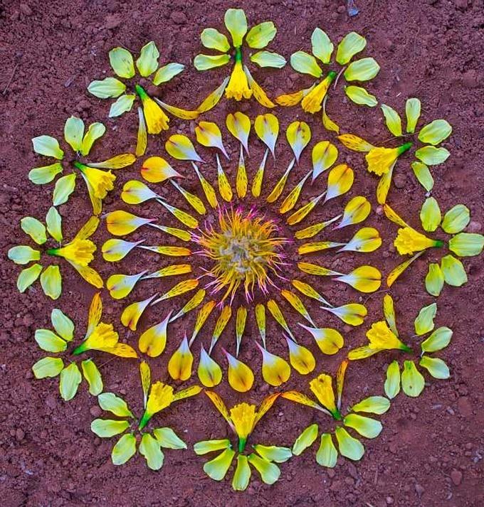 Zupi / Mandala de flores por Kathy Klein