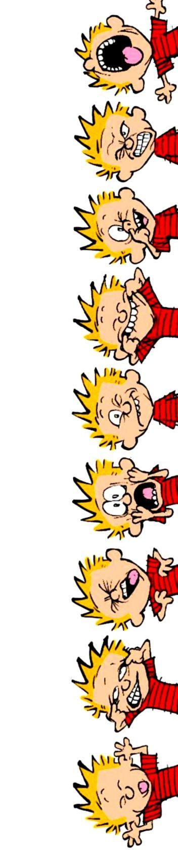 Calvin and Hobbes (DA) - That face.