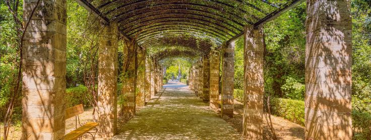 Did you know that Athens is full of Secret Gardens? Discover one of the city's best hidden gems, the mystifying green oasis that are brimming with life in spring