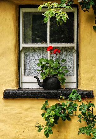 Teapot Window