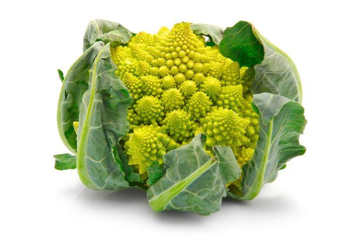 Minestra di broccolo e arzilla