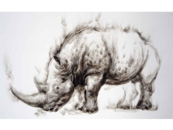Diane Veronique Victor - Smoke Rhino, smoke drawing