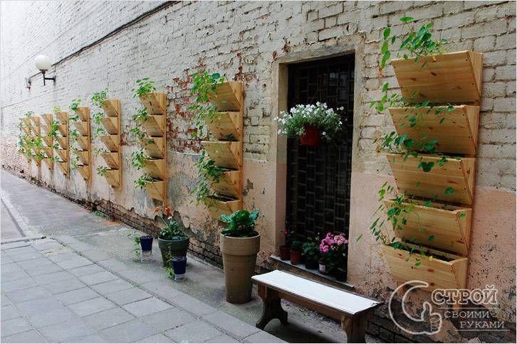 Вертикальный сад из деревянных ящиков