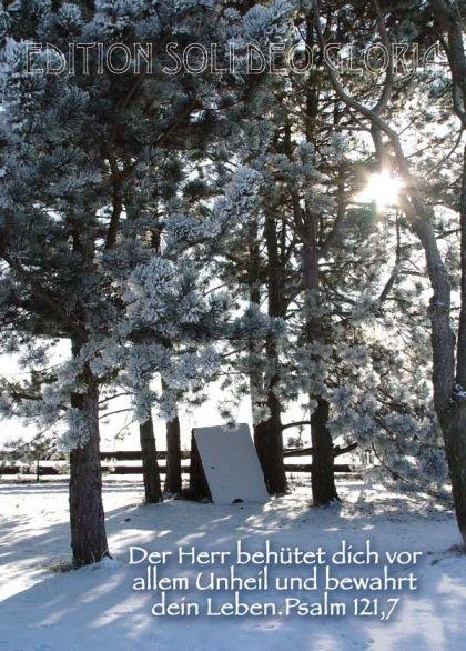 Psalm Weihnachten