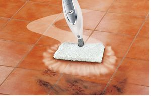 A Review of the Shark Steam Mop
