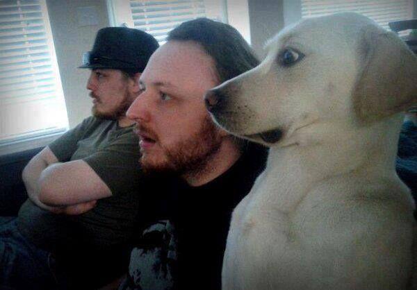 きっと観てるのはホラー映画