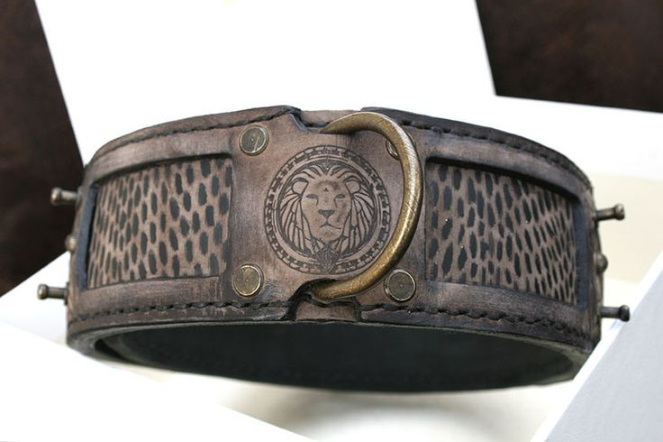 Antique brown leather dog collar with lion embossing, by SAURI