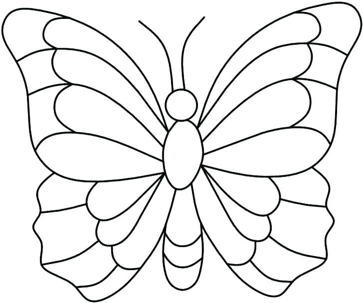 Coloring Pages Butterflies Free Printable Animals Butterfly
