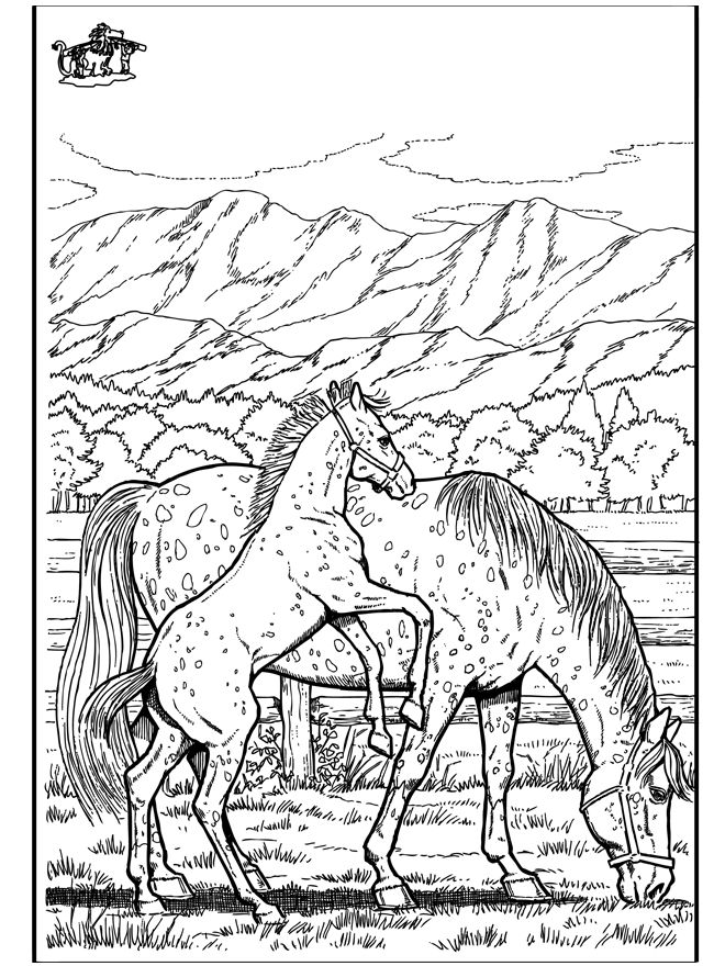 72 best western color pages images on Pinterest | Coloring books ...