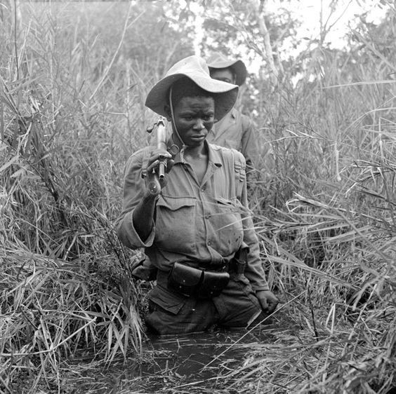 Progressing in muddy waters, with snakes, spiders, leeches and various kinds of amoebas. First Indochina war, pin by Paolo Marzioli