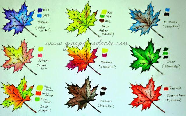 Atelier Gina Pafiadache: Sugestão de cores para os livros de colorir #2
