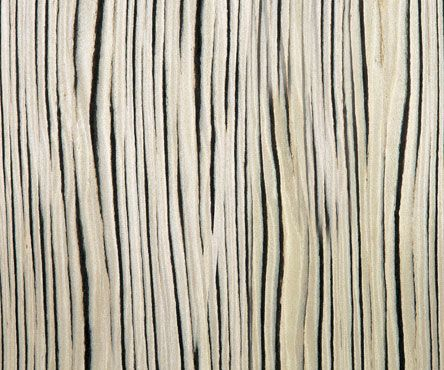 63504 White Macassar Treefrog Real Wood Veneers
