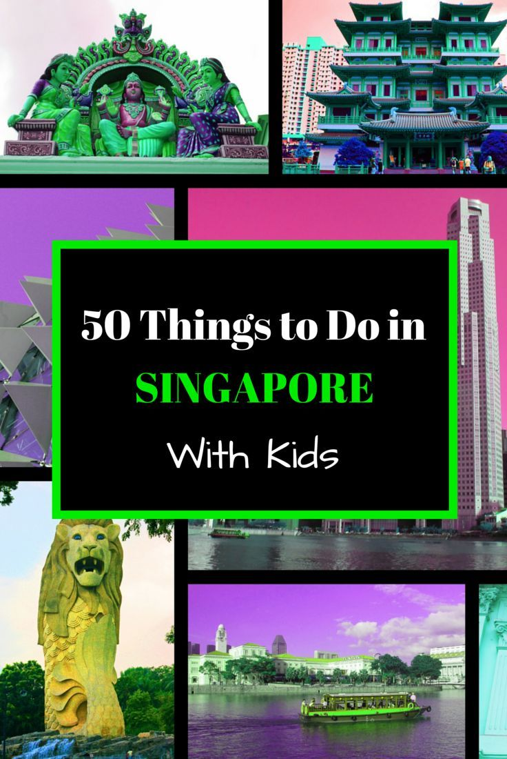 There is so much to do with kids in family-friendly Singapore, and here we prove it to you with 50 Things to Do in Singapore with Kids | Repinned by BabyGlobetrotters.Net