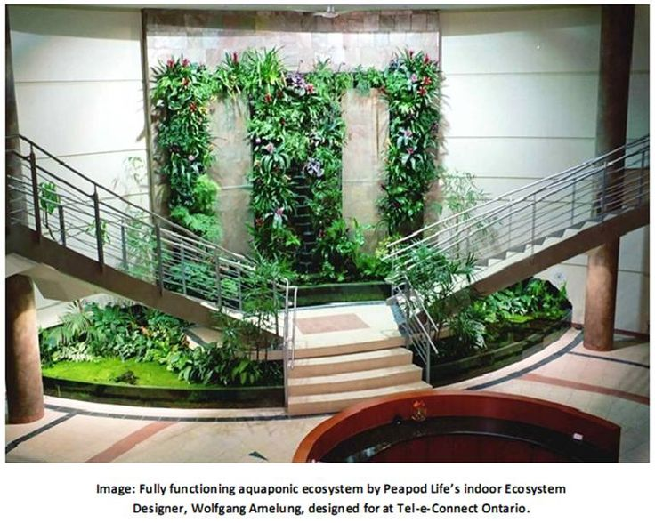 Fully functional indoor eco system aquaponics pinterest for Eco indoor garden house