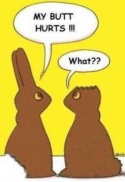 Happy Easter ......  Somehow i will never look at chocolate bunnies the same way ever again !!!... ooooooooooo      :c )    lol lol lol .....