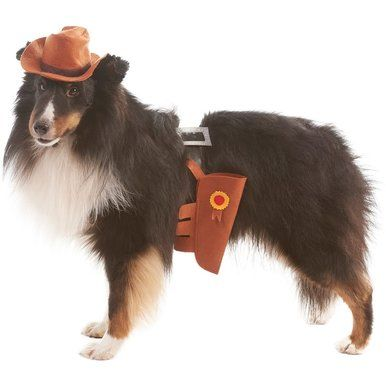 Ethical Lookin' Good! Fashion Pet Cowboy Costume Cozy Hat Elastic Belt X-Large