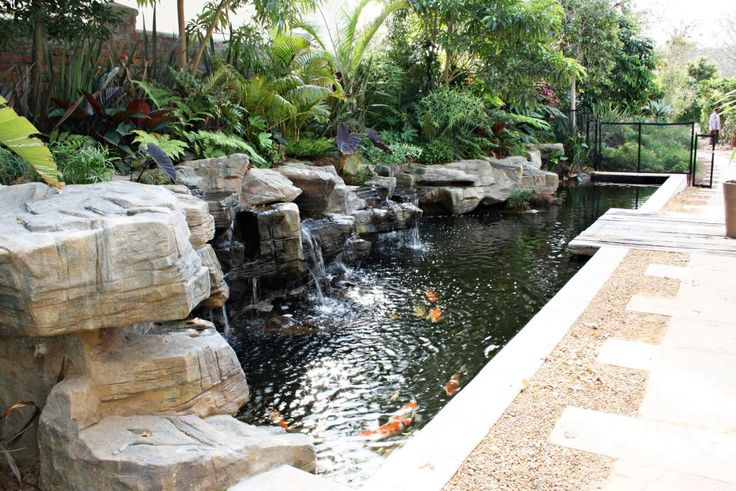 Awesome Cape Town Koi Pond with sculpted rock embankment and streaming waterfalls. A wetland filtration system with breeding zones for the fish. A classic integration of architecture and nature.