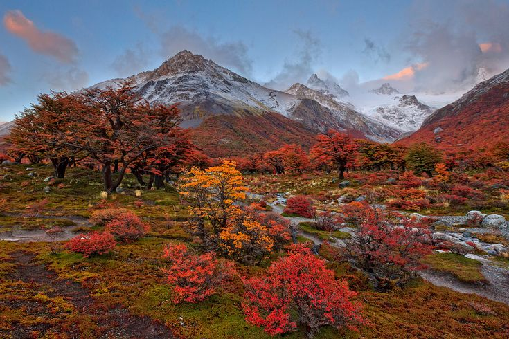 Autumn in Argentina   Flickr - Photo Sharing!