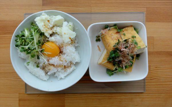 今日の200円ランチは卵かけご飯と厚揚げです♪かいわれ大根は何に入れても美味しい(・ω・)*