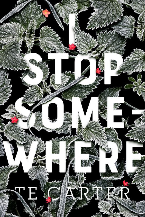 The problem is... I Stop Somewhere by T.E. Carter  The Story of the Cover