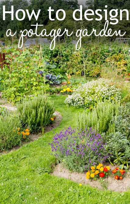 How to design a potager garden. It's a French kitchen garden where edible and decorative plants are mixed in the same border!