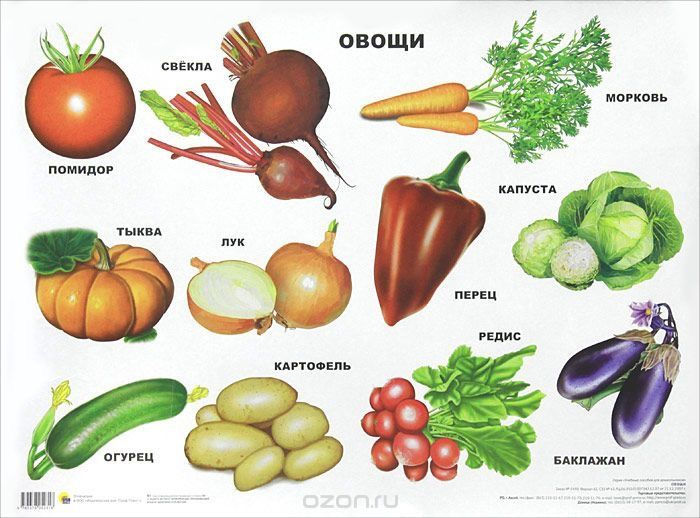 Обучающие плакаты для детей. Овощи