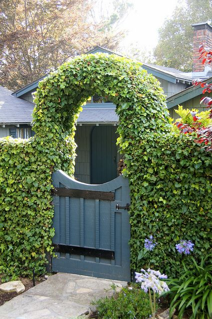 Ivy arch gate would coordinate well with current fencing
