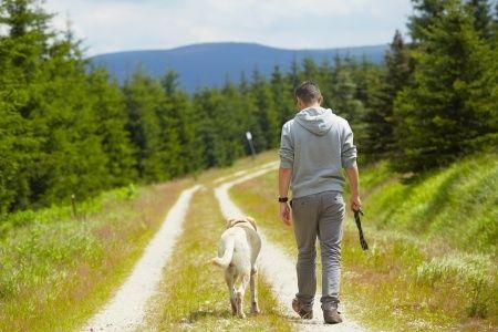 Tout le monde n'a pas bien compris ce que signifie promener son chien sans laisse.Que faudrait-il faire et ne pas faire ? Comment bien vivre ensemble alors que des chiens sont promenés détachés parmi des gens ?Comment bien vivre ensemble alors que des chiens sont promenés détachésparmi des gens qui promènent leurs chiensattachés