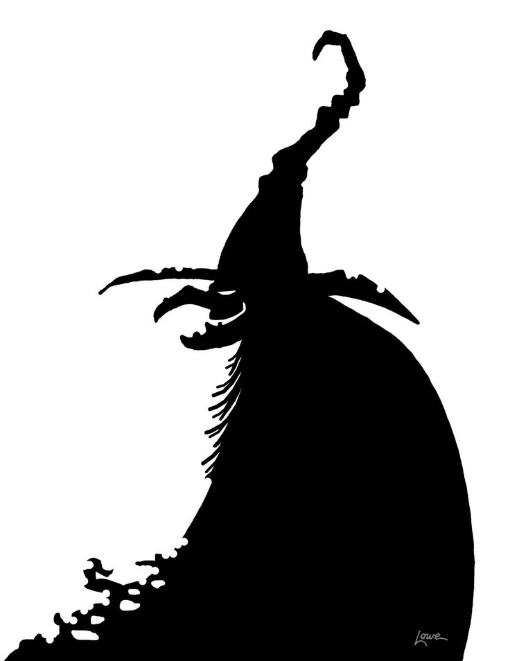 witches are the latest additions to the halloween window silhouette series and what would a witch be without including her cauldron and bla - Black Cat Silhouette Halloween