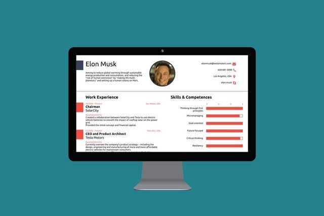 How to Create a CV like Elon Musk's for Your Protagonist
