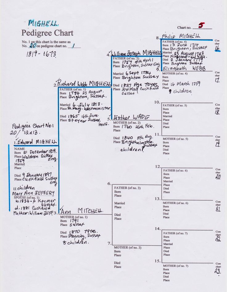 Mighell Pedigree Chart N0 5. Family tree Chart 3a/. Edward & Mary MIGHELL No 1. FTC.4/. Richard W, & ann MIGHELL 2 & 3. FTC.5/. William & Esther MIGHELL 4 & 5. FTC 6,. Philip & Elizabeth MIGHELL 8 & 9.