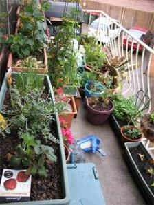 Best Balcony Container Garden Images On Pinterest Vertical